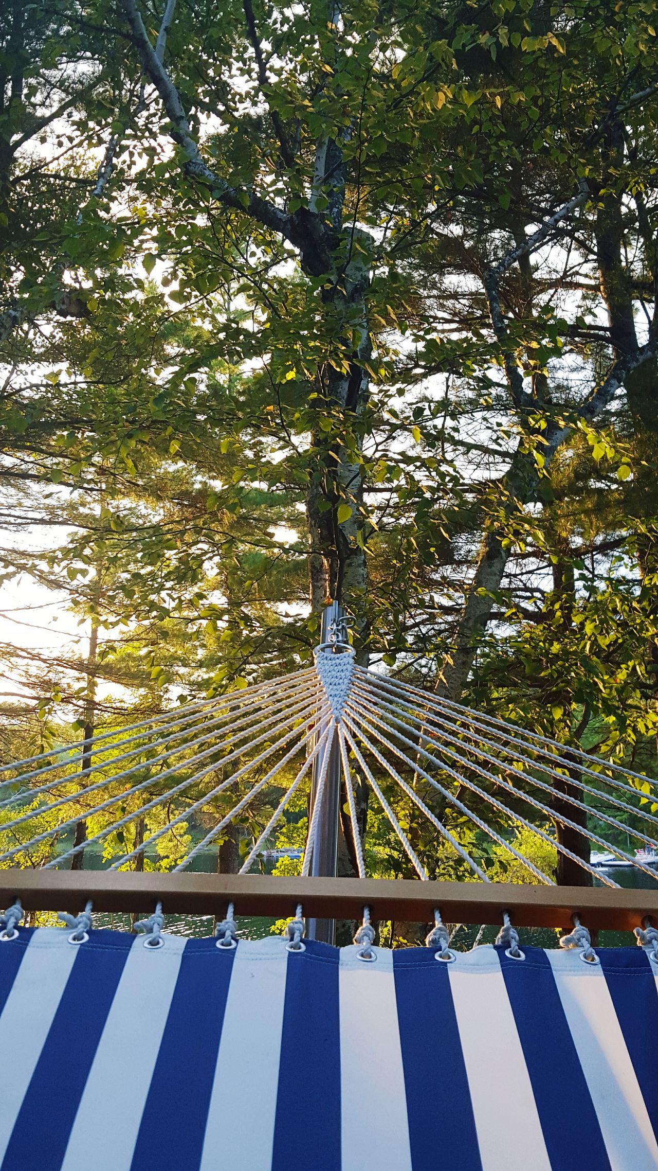 Hammocklife Hammockcamping Sky And Trees On The Hammock Mainelife Mainephotography Maine The Way Life Should Be Hammocking In My Hammock My Afternoon Hammock