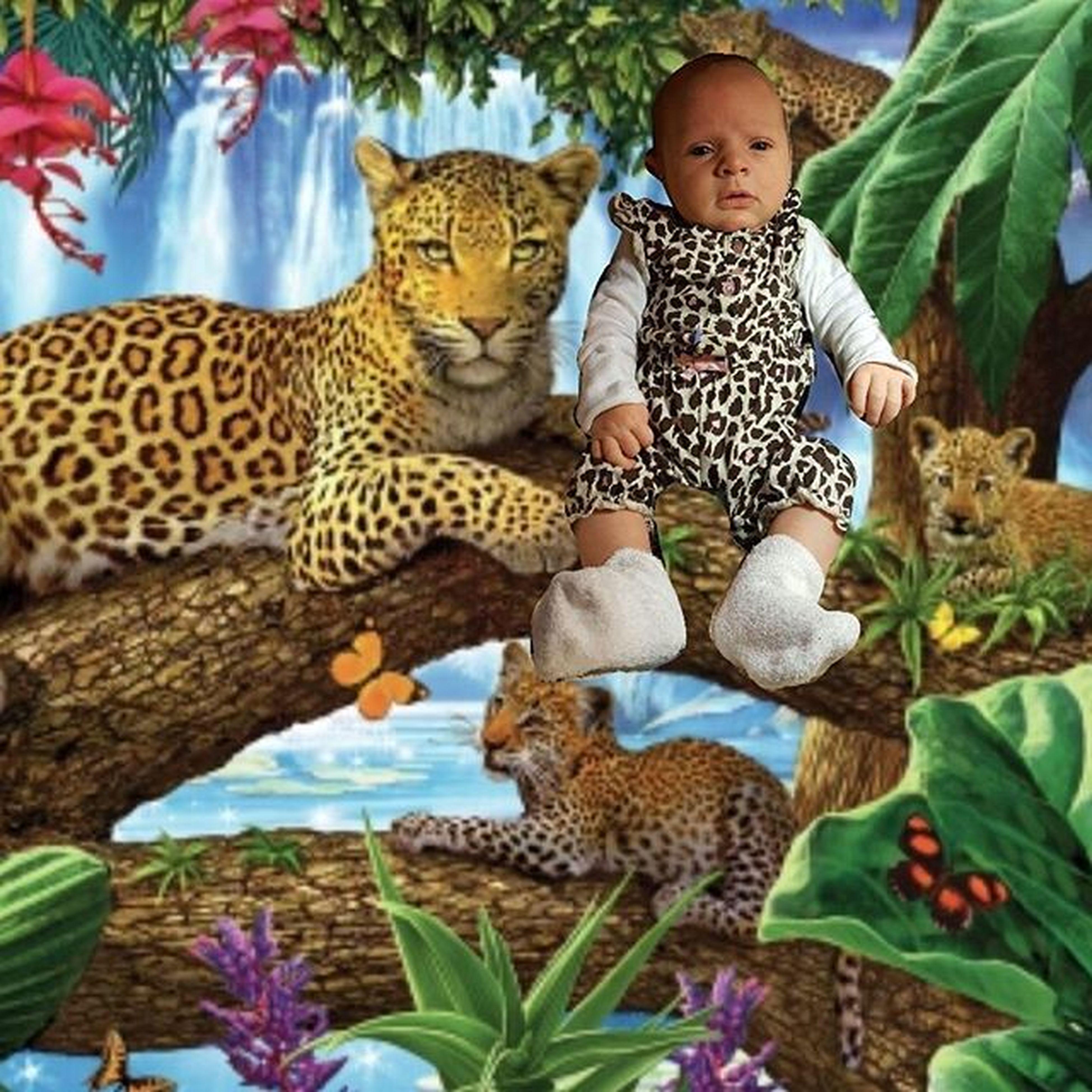 Leopardbaby Mightyjungle Raileyroo Rairai Raileymichayla Raileyholland Sheisgonnahatemewhenolder Canthelpmyself Socute Raileyroar