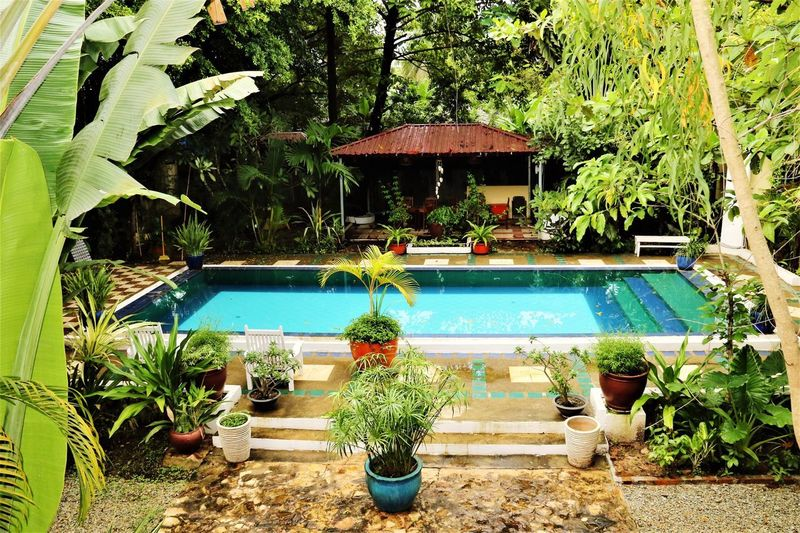 Swimming Pool Water Tourist Resort Plant Nature Outdoors Relaxation Day Vacations Growth Architecture Tree Luxury Hotel Luxury No People Beauty In Nature