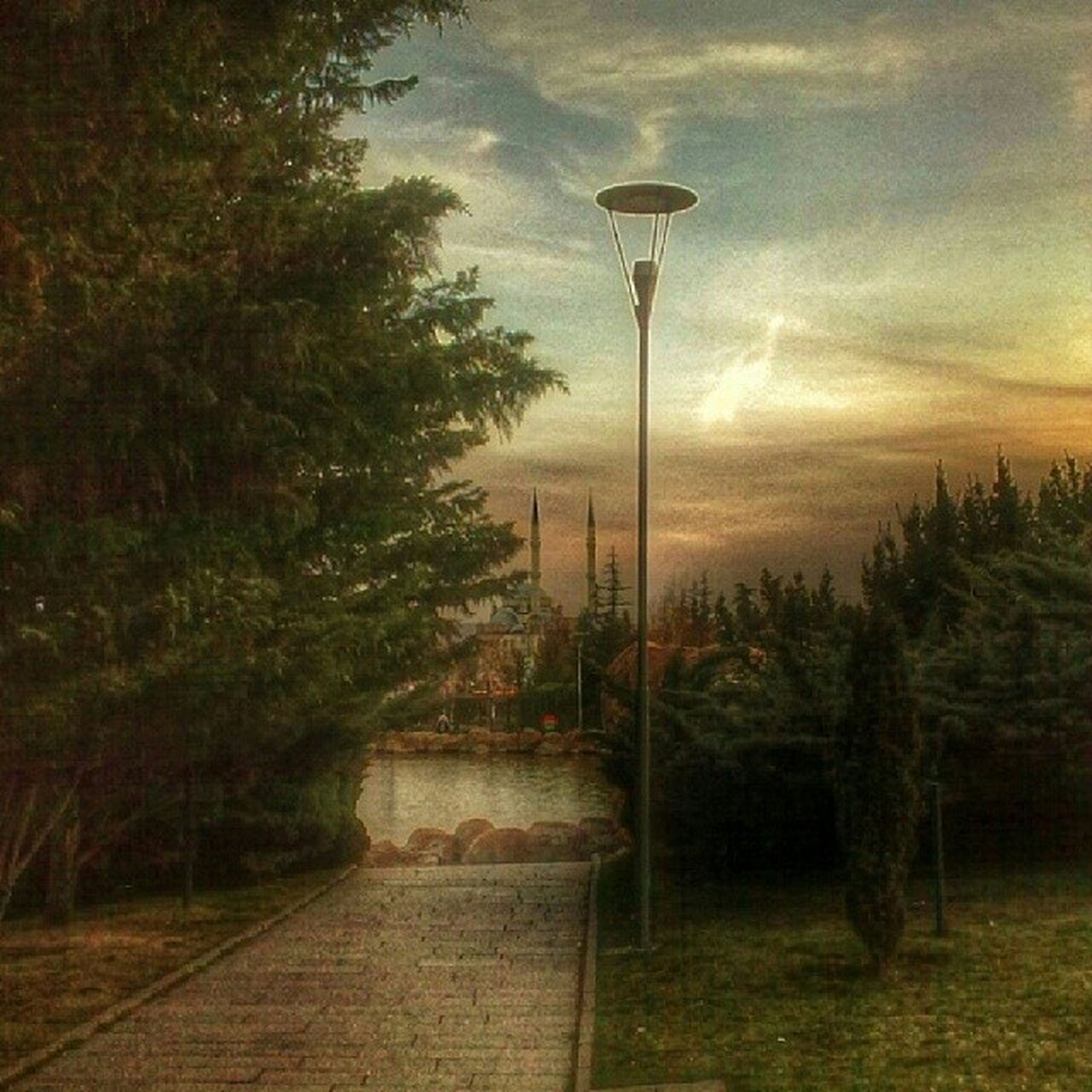 tree, street light, the way forward, sky, lighting equipment, built structure, architecture, tranquility, building exterior, footpath, cloud - sky, nature, growth, railing, no people, outdoors, walkway, illuminated, plant, tranquil scene