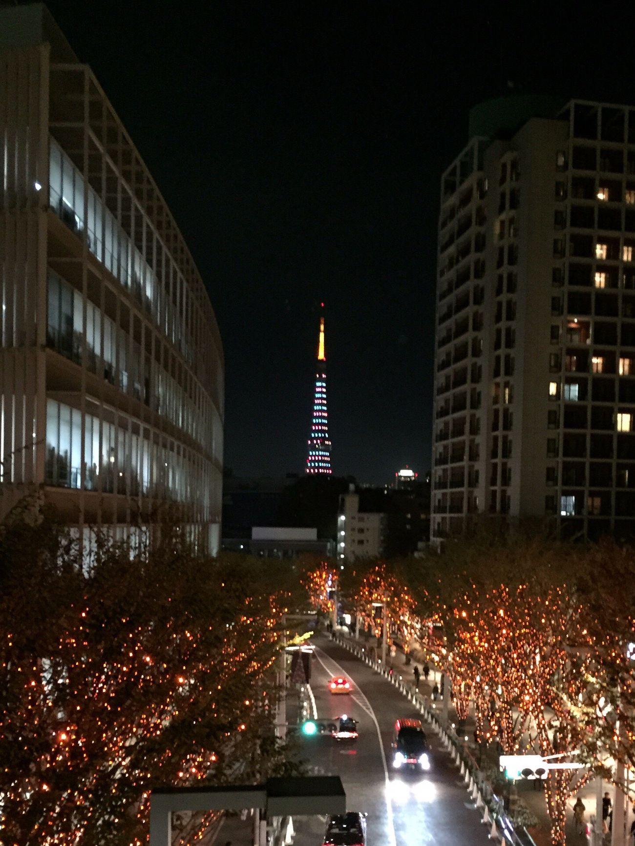 Illuminated Illumination Christmas Lights Christmas Decorations Tokyo Tower Roppongi Roppongihills Tokyo イルミネーション クリスマス 東京タワー Night 夜景 六本木 東京 六本木ヒルズ