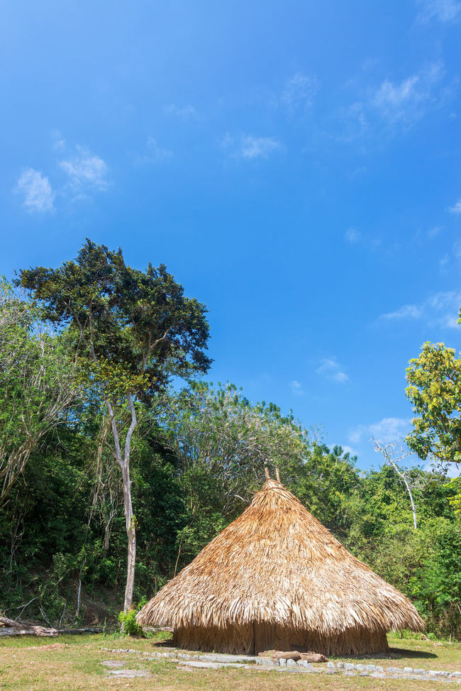 Simple house of a Kogi indian in Tayrona National Park in Colombia Ancient Archaeology Background Bamboo Beach Cabin Calm Caribbean Coast Colombia Forest Green Hot House Hut Idyllic Indians  Kogi National Park Outdoor Park Shelter Tayrona Tropic Village
