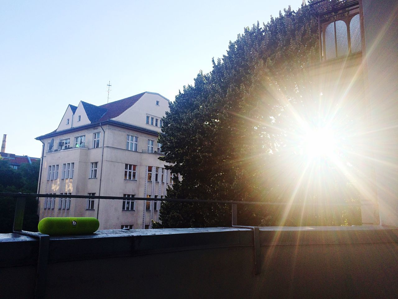 built structure, architecture, sunbeam, sunlight, building exterior, sun, lens flare, tree, no people, day, outdoors, clear sky, low angle view, education, sky, nature, close-up