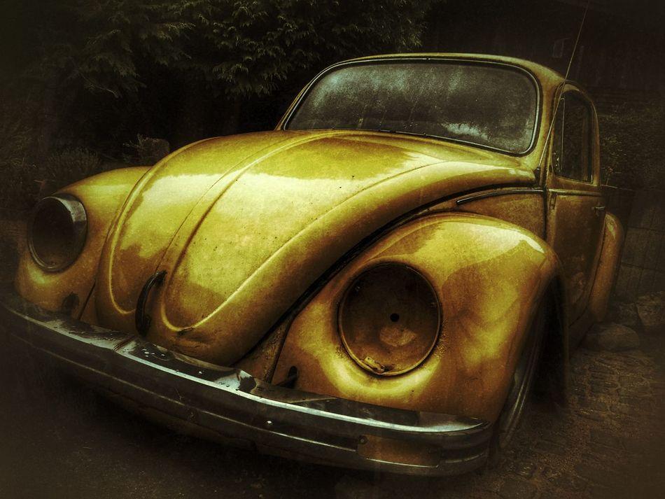 Old VW Käfer Volkswagon VW VW Beetle Old Car Yellow Gelb Bug MeinAutomoment