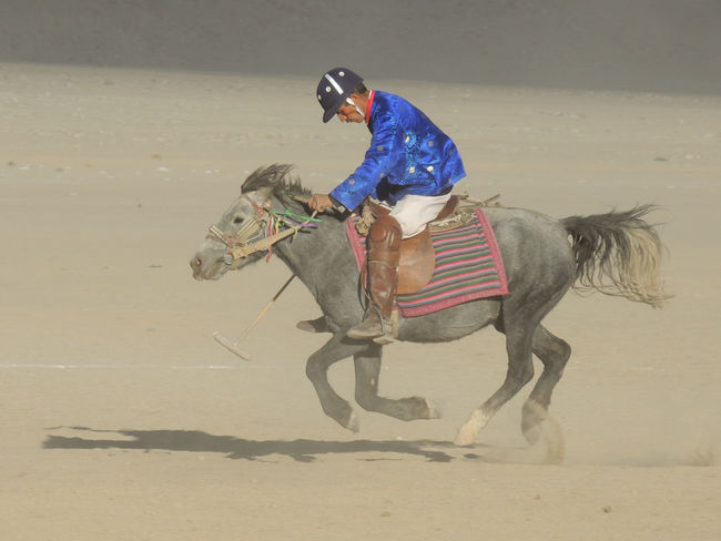 Fast Rider India Indiapictures Kashmir Kashmir , India Kashmir Beauty Leh Leh Ladakh Leh Ladakh.. LehLadakh On The Move Polo Polo Player Polo Pony Polo Rider Pony Riding Shadow Travel Travel Destinations Travel Photography Travelphoto Travelphotography