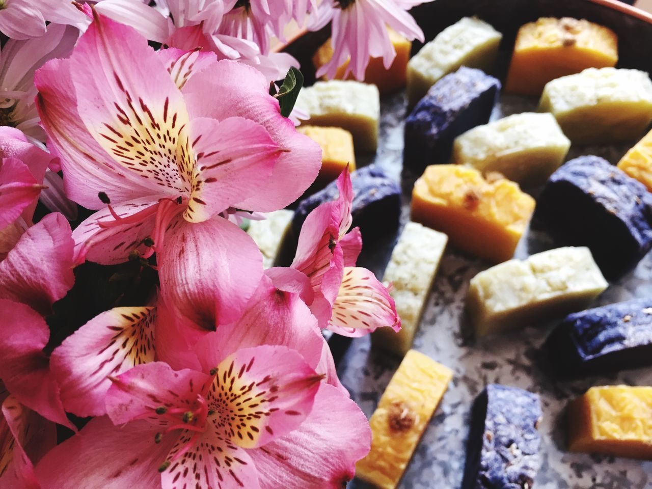 Flower Freshness Close-up Nature No People Beauty In Nature Fragility Flower Head Nature Health Spa Bath Soap Colors Of Nature Natural Beauty Natural Organic Variation