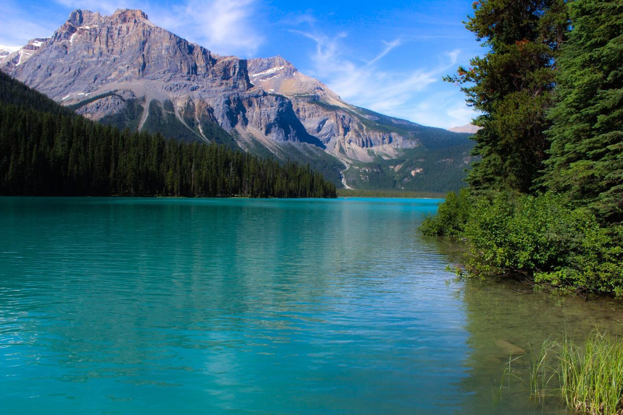 Mountain Scenics Lake Beauty In Nature Nature Tranquil Scene Tranquility Waterfront Mountain Range Water Reflection No People Blue Outdoors Day Rocky Mountains Landscape Tree Sky
