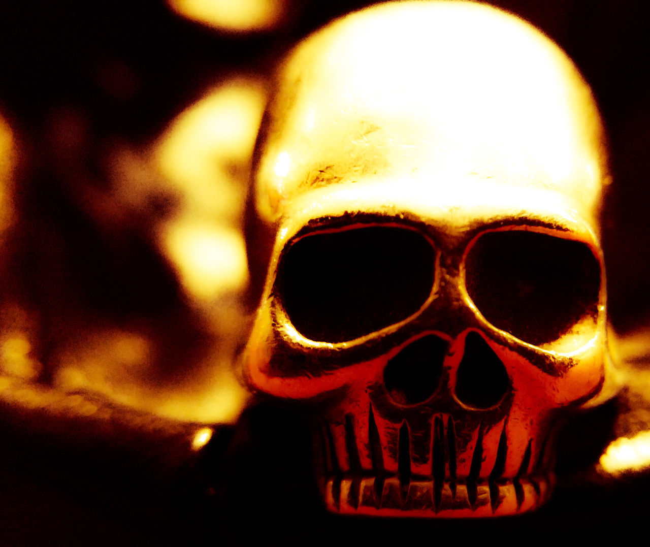human skeleton, human skull, human bone, close-up, spooky, halloween, indoors, night, jack o lantern