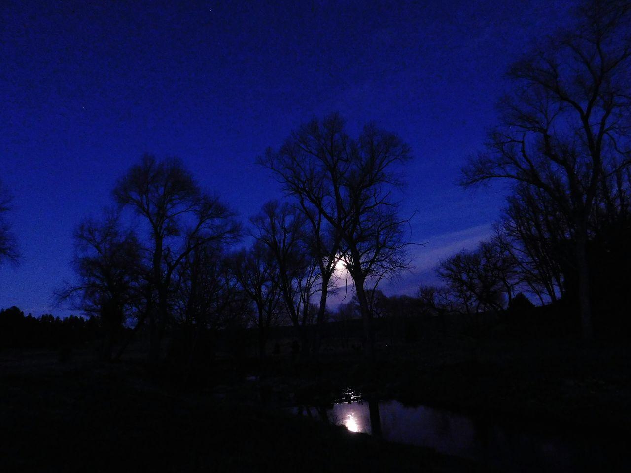 Tree Sky Silhouette Dramatic Sky Newmexicomountain Newmexicoskys NewMexicoTRUE Newmexicophotography Newmexicosunsets Newmexicoskies Newmexicosunset Moon Shots Moon