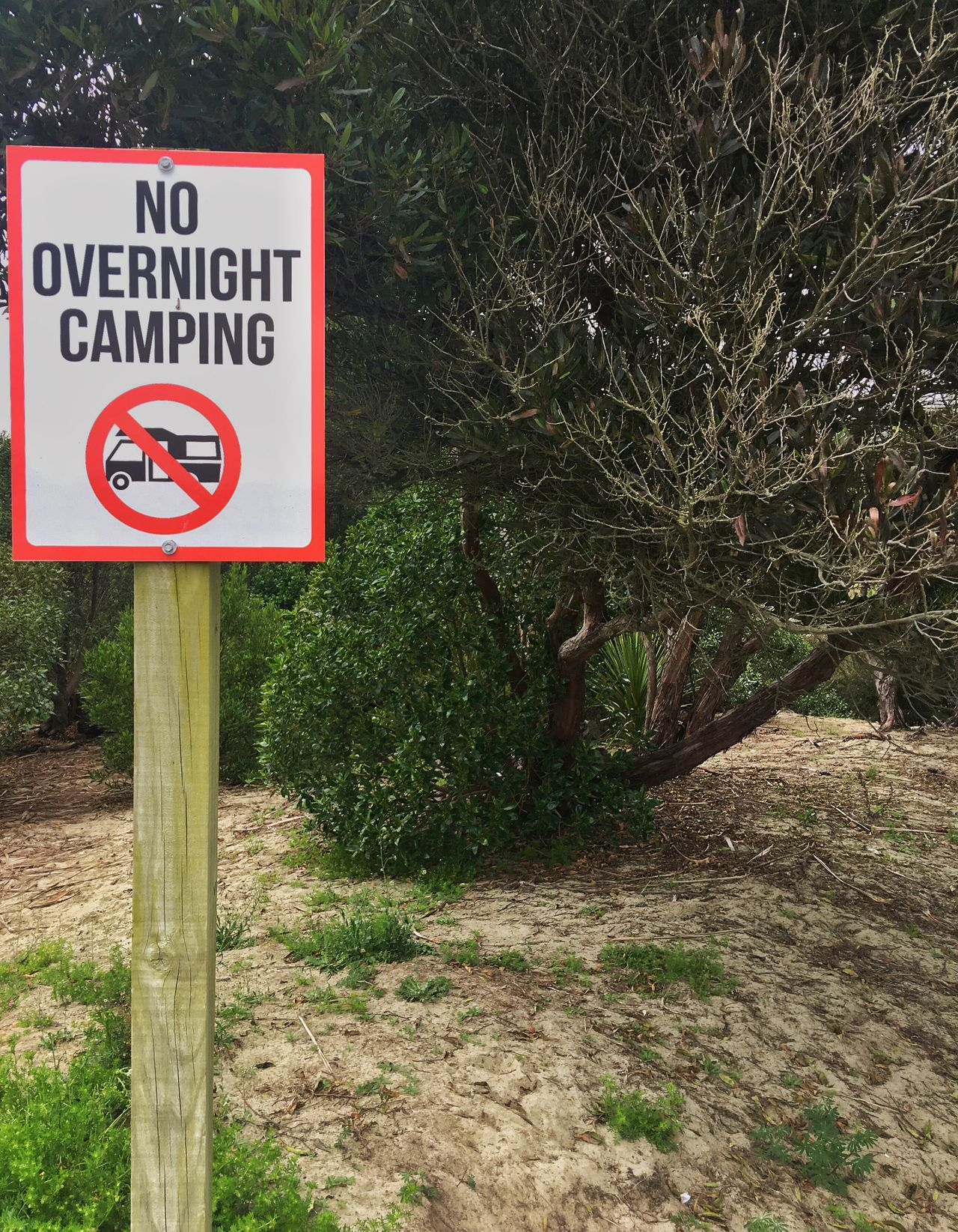 No overnight camping Information Sign Sign Warning Sign Outdoors No Camping Beach Sign Post