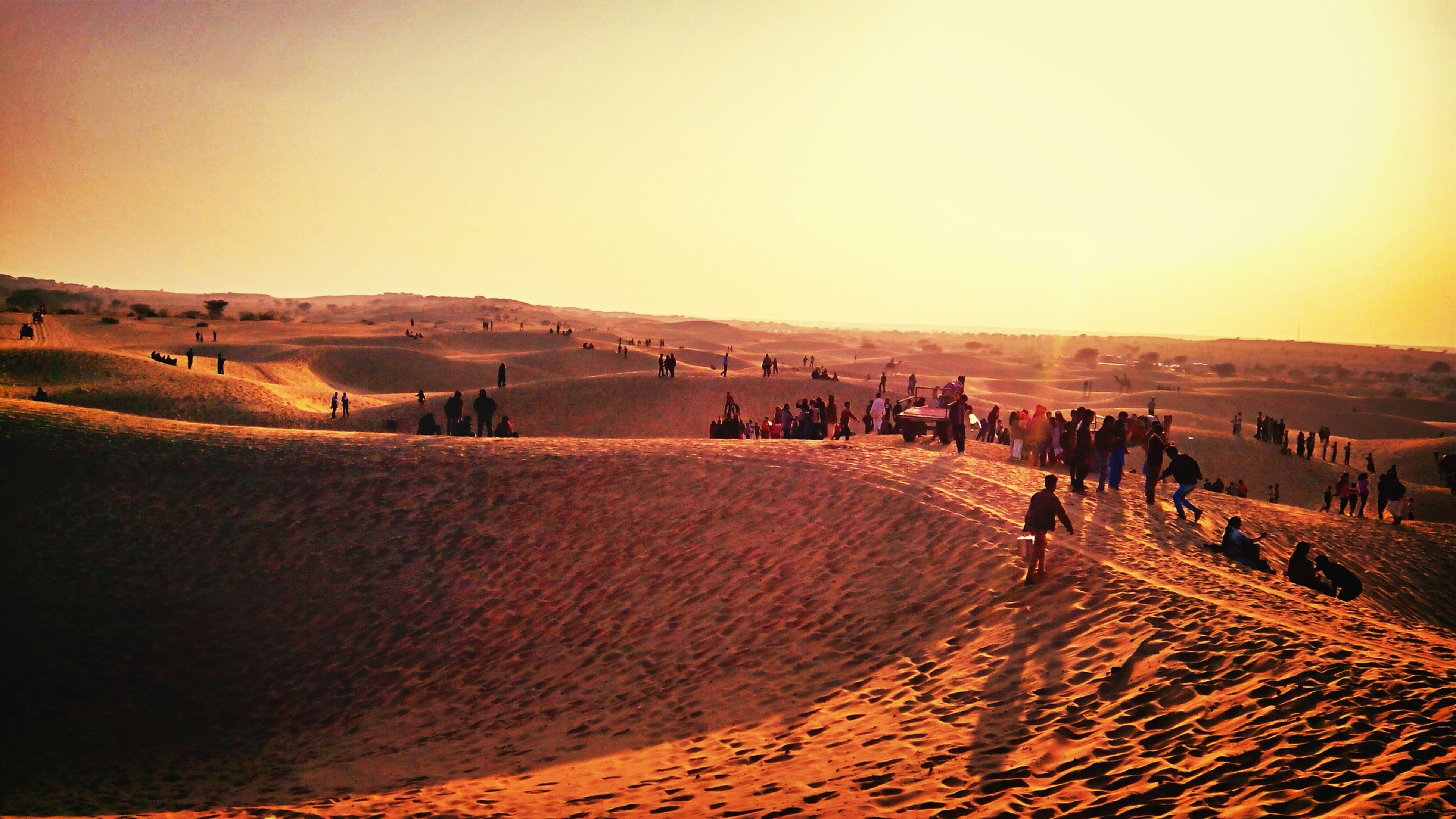 landscape, desert, clear sky, sand, sand dune, tranquil scene, copy space, field, tranquility, large group of people, horizon over land, scenics, arid climate, nature, sunset, rural scene, agriculture, beauty in nature, sky
