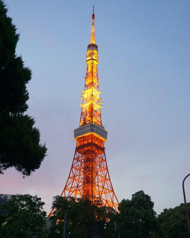 Tokyo Tower Tokyotower 東京タワー🗼 東京タワー 夕暮れどき 夕暮れ 空 大空