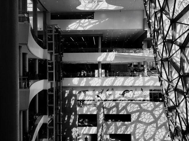 Showcase: February Shanghai Natural History Museum The Architect - 2016 EyeEm Awards