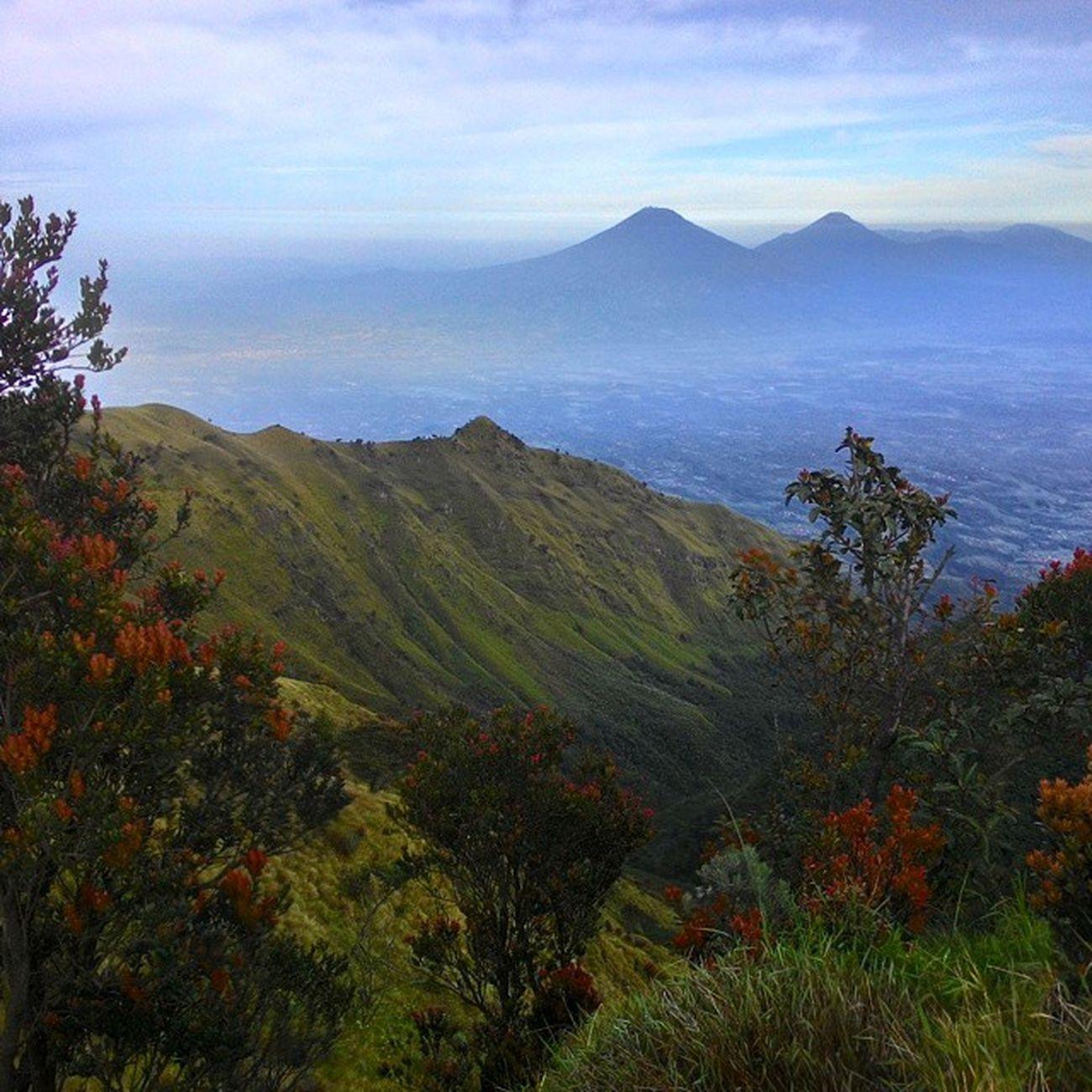 tampak Sindoro Sumbing dari Puncaksyarif Explorecentraljava Exploreindonesia Indotravellers Id_pendaki Doyandolan Betahngemprah Pergilagi
