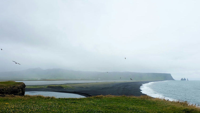 Black Sand Beach Vik Iceland Black Sand Beach Landscape Nature Isolation Puffins Oceanside My Year My View