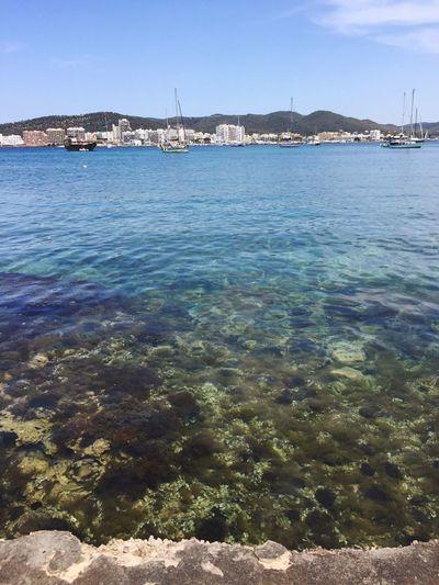 Ibiza addition Ibiza Sea Summer Beauty In Nature