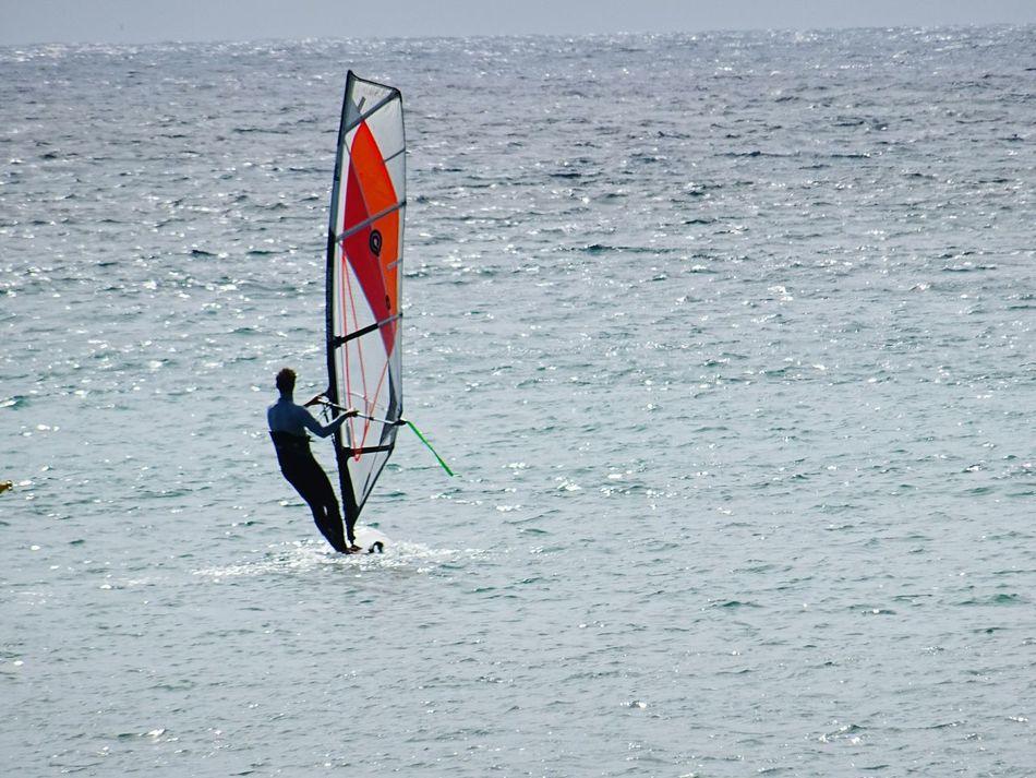 Taking Photos Photography Photo♡ Sports Photography Seasports Eyem Sports Photography Eyem Sports Windsurfing Windsurfers Windsurf Taking Pictures Windsurf Life