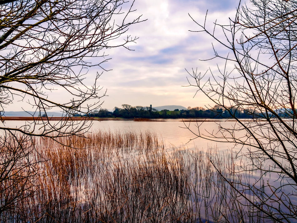 Inis Cealtra Lough Derg Ireland Lake Water Nature Outdoors Sunset Beauty In Nature Tranquility No People Scenics Tree Tranquil Scene Landscape Day Landscapes Water's Edge Lough