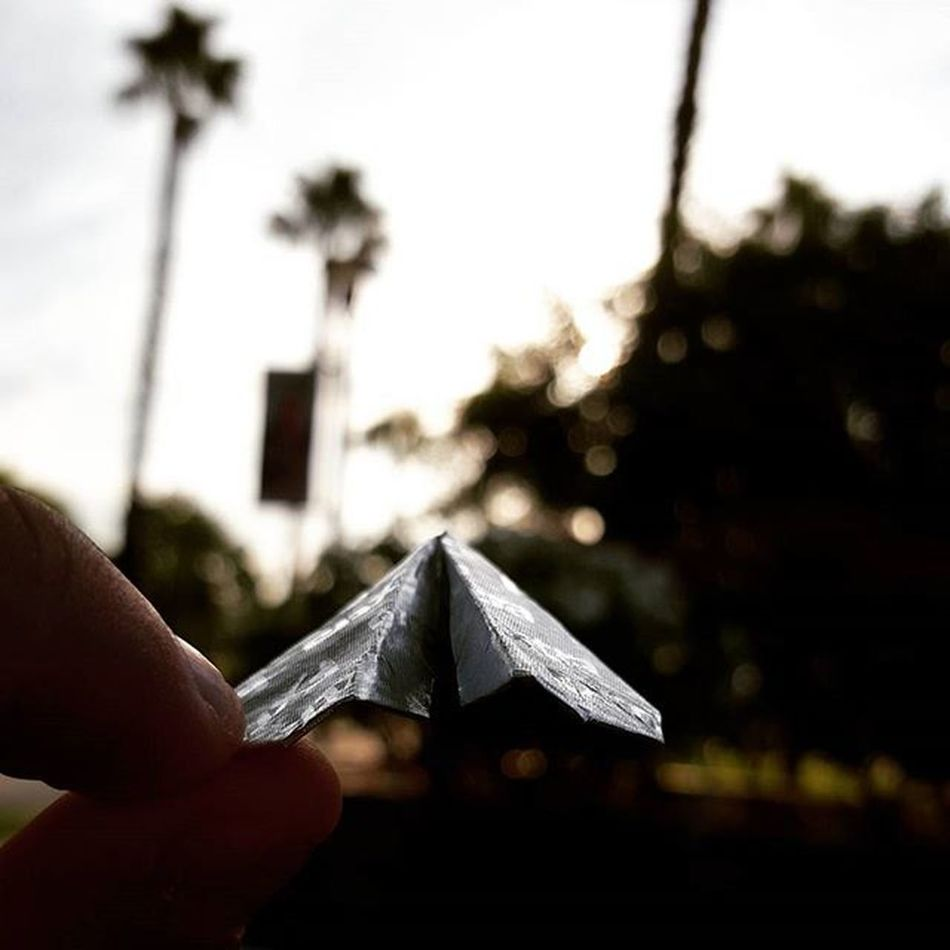 Spread your Wings and ✈☁TAKE FLIGHT☁✈ Photography Paperplanes California Adventure Art Flyaway Fly