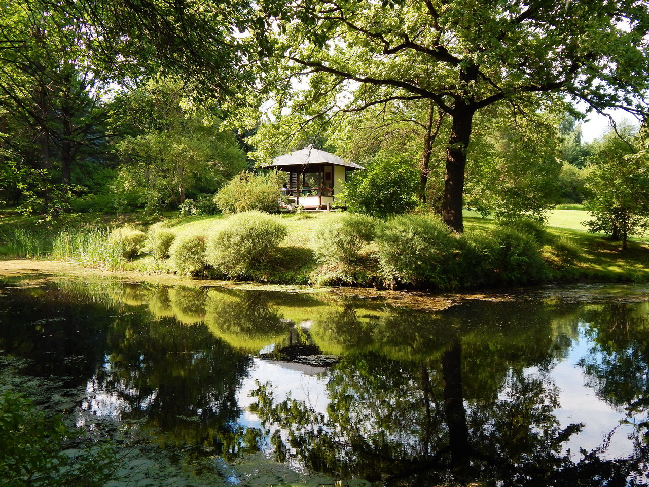 Japanese Garden in summer. Architecture Beauty In Nature Built Structure Day Green Color Growth Japanese Garden Lake Nature No People Outdoors Park Pavillion Pergola Pond Reflection Reflection Lake Scenics Sky Summertime Tranquil Scene Tranquility Tree Water Waterfront