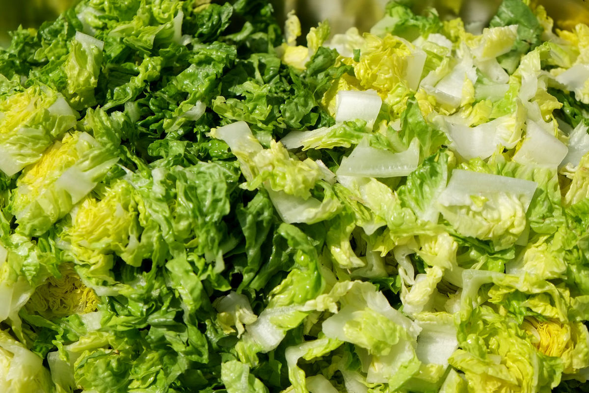 Abundance Backgrounds Broccoli Cabbage Close-up Detail Food Freshness Full Frame Green Green Color Large Group Of Objects Leaf Vegetable No People Organic Ready-to-eat Salad Selective Focus Still Life