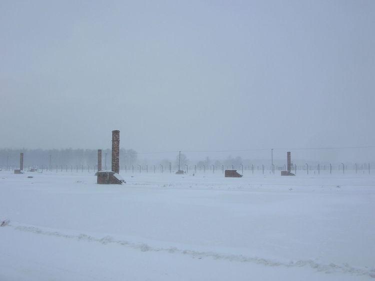 Campo di concentramento Birkenau, gennaio 2010 Barbed Wire Cold Temperature Covering Day Holocaust No People Outdoors Snow Winter