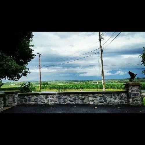 My view everyday ♡ Beautiful Sky