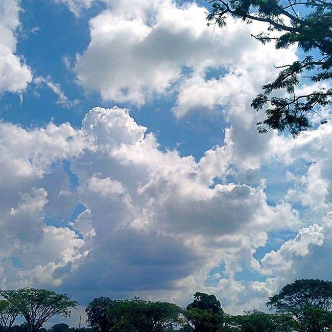 Awan......kalau dapat ku capai maka saktilah hamba - Saifudin, laksamana sunan (bagaikan puteri) SubhanAllah Throwback Upm Sky Clouds Awan Bagaikanputeri Laksamanasunan Quoteoftheday Photooftheday Wonderful Nexus5photography Mixcamera360