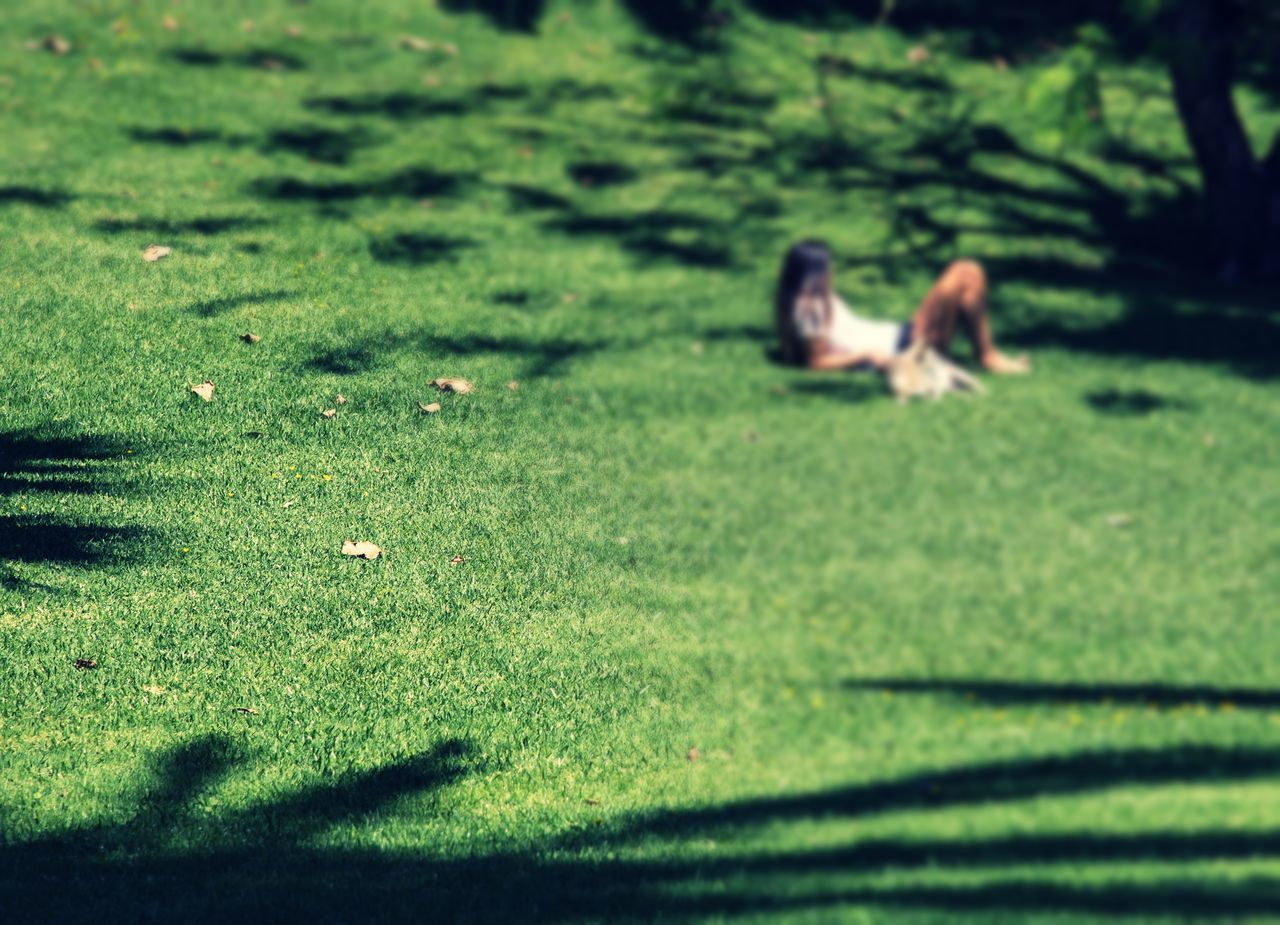 Beauty In Nature Day Field Friendship Grass Green Color Growth Landscape Nature Outdoors People Real People Shadow Sitting Sunlight The Great Outdoors - 2017 EyeEm Awards Tilt-shift Togetherness Live For The Story