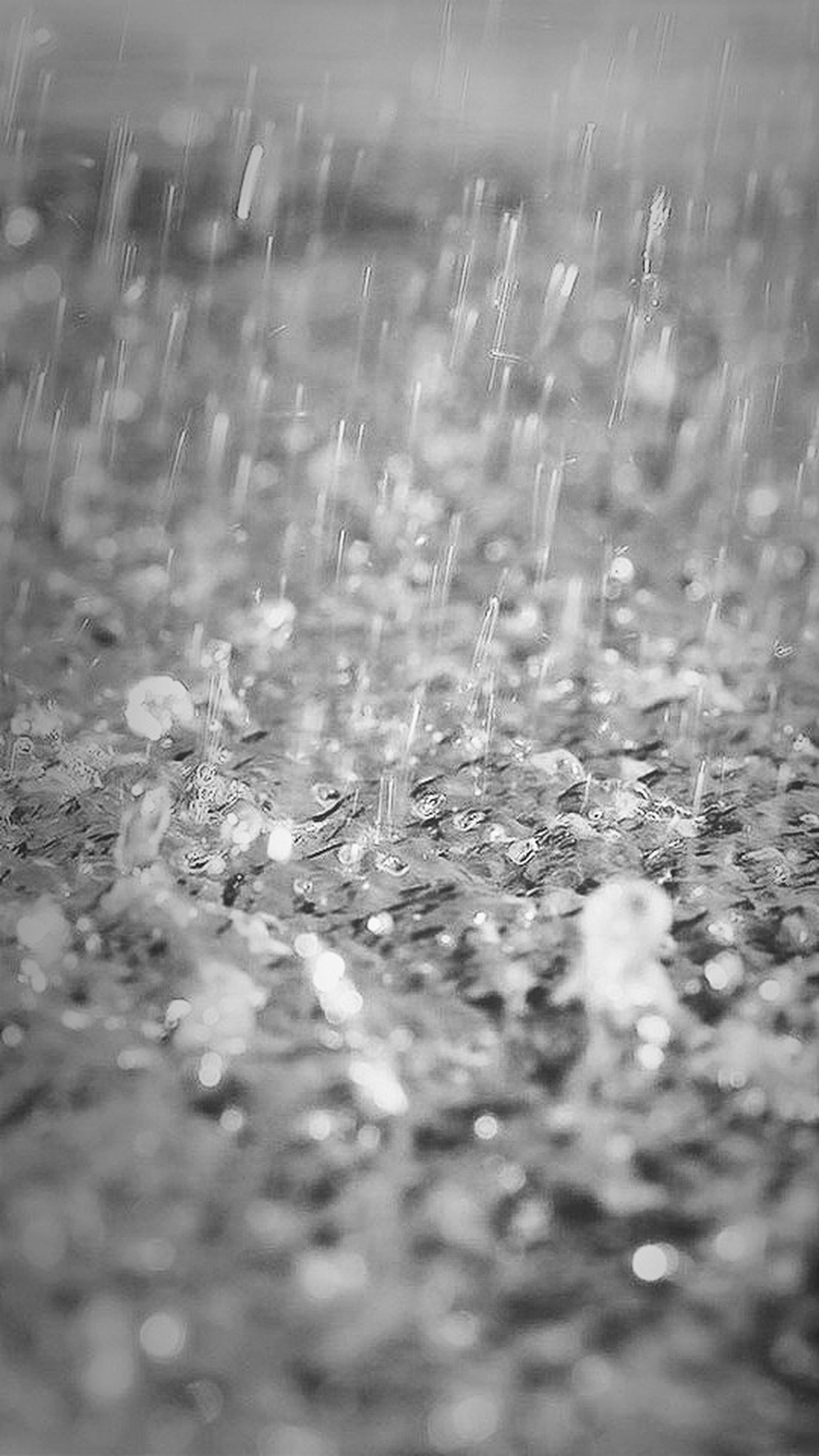 drop, selective focus, water, wet, close-up, nature, plant, growth, field, fragility, focus on foreground, beauty in nature, freshness, rain, grass, tranquility, weather, season, day, transparent