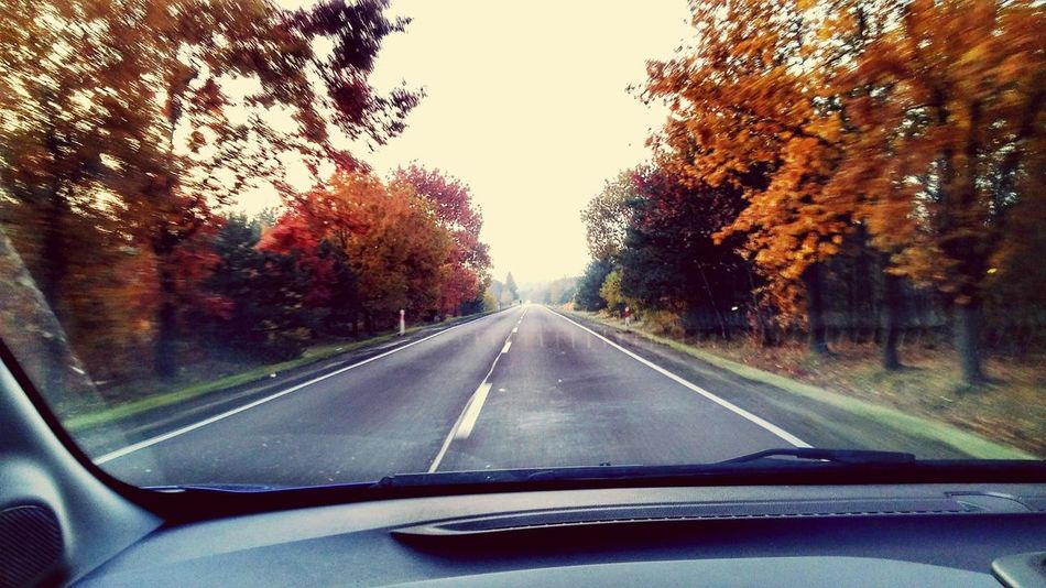 No People Scenics Autumn Colors Autumn Colors Green On The Way To Work Asphalt Sky Day Transportation Road Auto