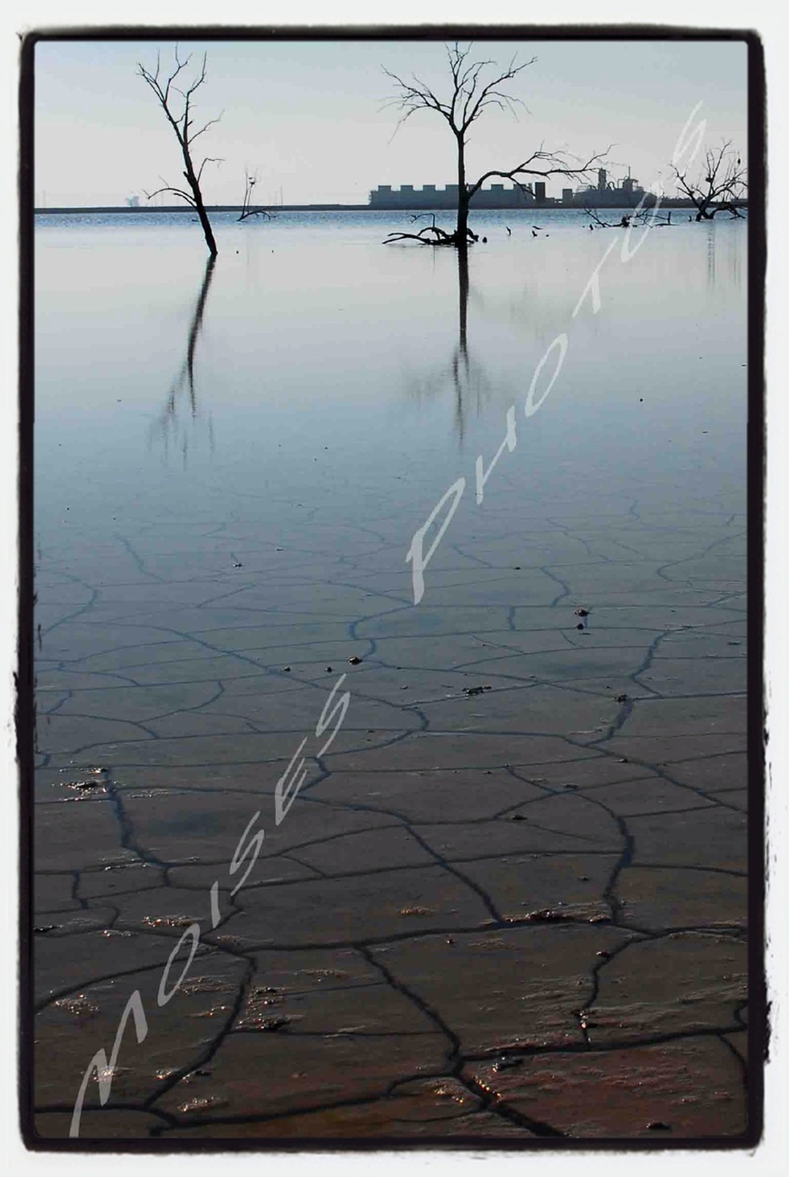 water, bare tree, lake, tranquility, tranquil scene, nature, reflection, cold temperature, winter, beauty in nature, transfer print, scenics, snow, frozen, sky, river, auto post production filter, no people, outdoors, day