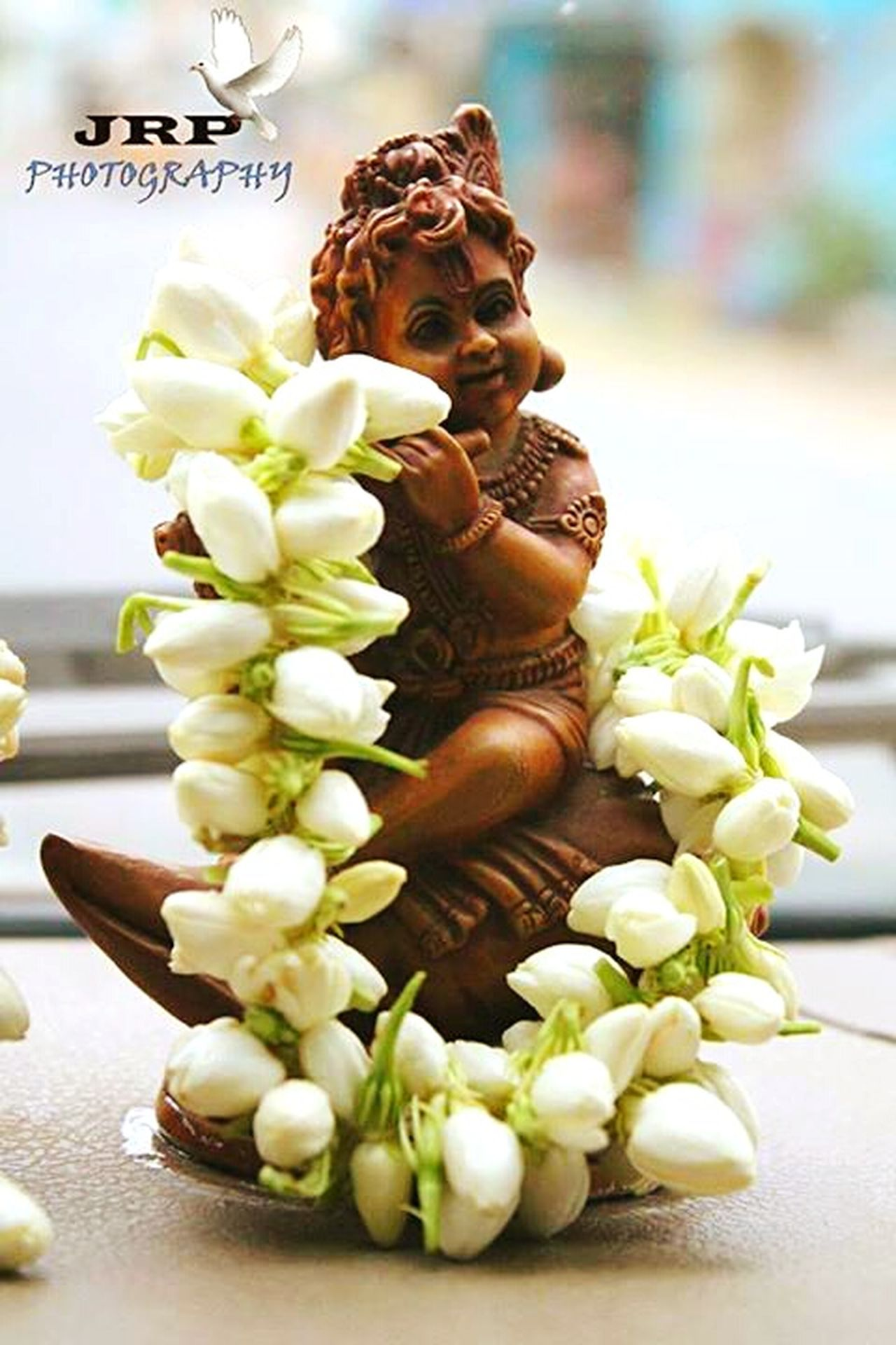 Load Krishna. JRPphotography Load Krishna Close-up Flowers Beautiful ♥ India India Eyeem Eyeem India Indian Indiapictures Indianphotography India_clicks Indian Culture  Freshness Bunch Of Flowers Vacations Creativity Focus On Foreground Growth New Life Flower Art Of Life Key Of Mind Key Of Life Art Of Living
