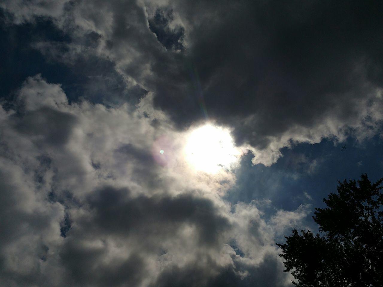 Taking Photos Sun