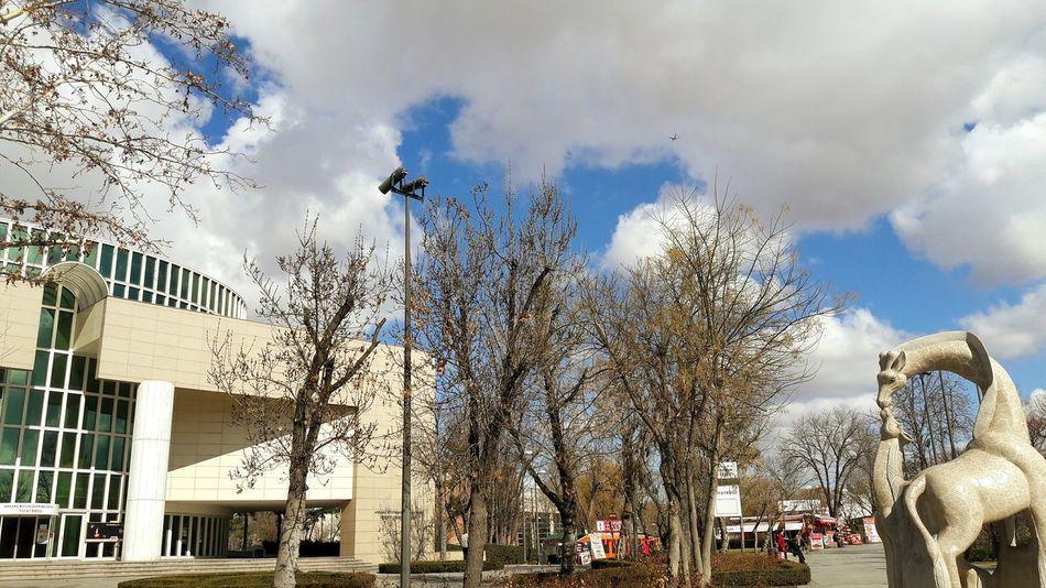 Sky Cloud - Sky Outdoors City Motion Day Theater Tiyatro Tiyatroyuseviyoruz Tiyatrozamanı Tree Gençlik Parkı Ankara/turkey Baskent Tiyatrosu Yaşasın 😍😌😊 Sanat Art Art Is Everywhere