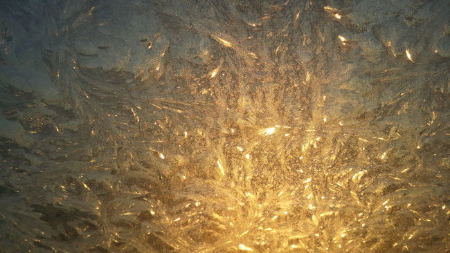 Backgrounds Close-up Frozen Frozen Nature Frozen Water Glowing Gold Golden Golden Hour Ice Iceflower Iceonwindow Wintertime
