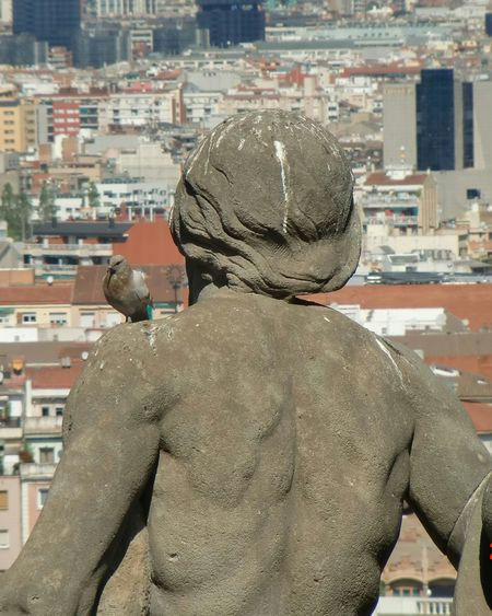 Cityscape City Rear View Architecture Building Exterior Adult People Business Adults Only One Person Urban Skyline Outdoors Only Men Young Adult Day One Man Only Barcelona SPAIN Statue Dove Idgas