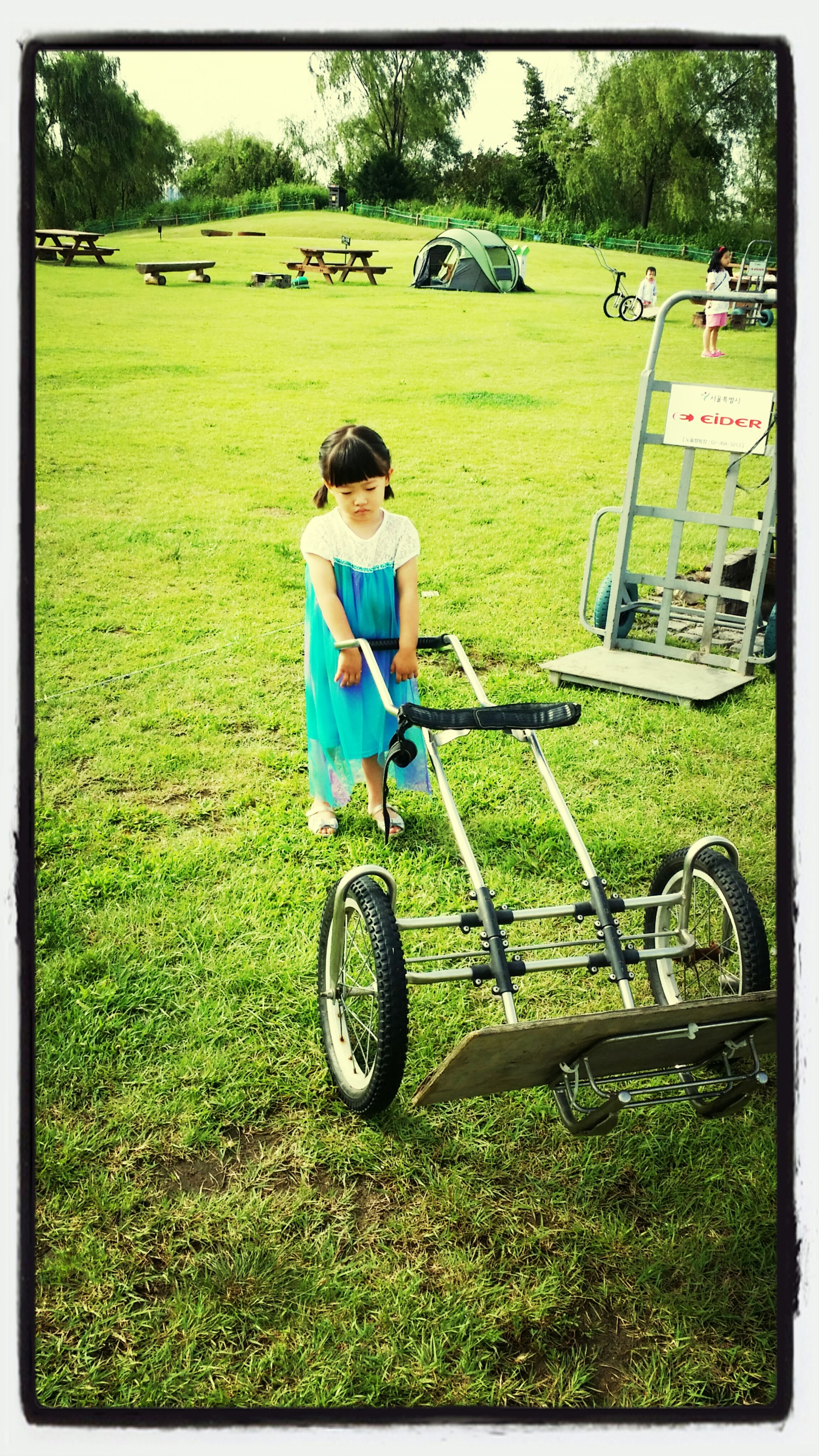 grass, transfer print, bicycle, land vehicle, mode of transport, transportation, auto post production filter, field, childhood, green color, full length, leisure activity, lifestyles, grassy, tree, day, sunlight, men