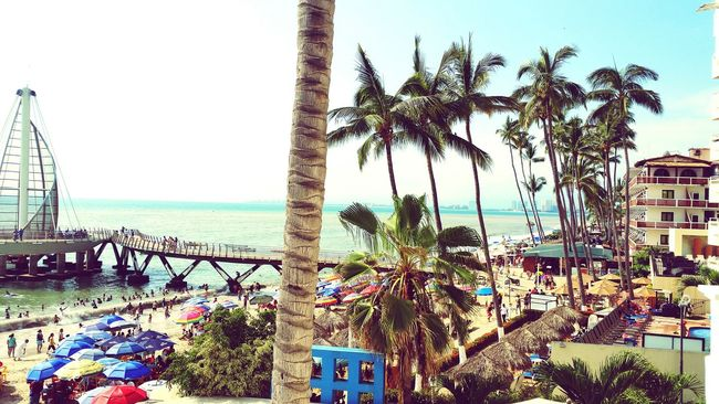 Puertovallartajalisco Playadelosmuertos Palm Tree Architecture Vacations Outdoors Sea Water High Angle View