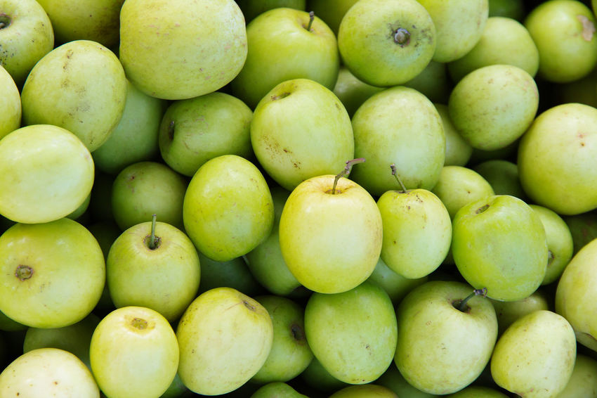 jujube fruit Jujube  Abundance Backgrounds Close-up Day Food Food And Drink For Sale Freshness Fruit Full Frame Green Color Healthy Eating Jujube Fruit Large Group Of Objects Mango Market Monkey Apple No People Outdoors Retail