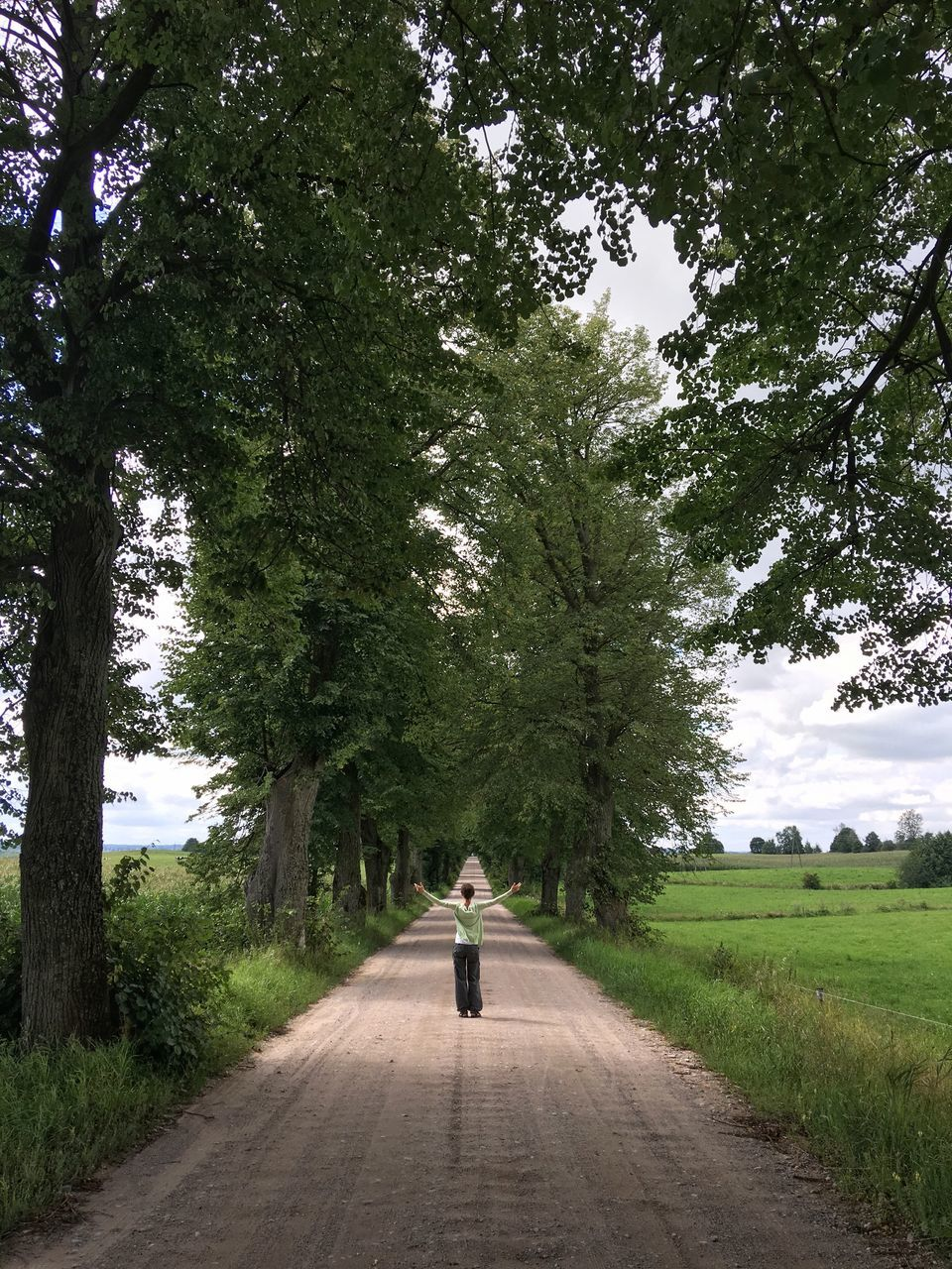 tree, full length, rear view, one person, road, walking, the way forward, real people, casual clothing, day, transportation, nature, leisure activity, outdoors, growth, beauty in nature, grass, sky, people