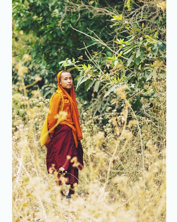 Traditional Clothing Full Length One Person Outdoors Tree One Young Woman Only One Woman Only Day Young Adult People Adult Adults Only Nature Monk  Myanmar The Portraitist - 2017 EyeEm Awards