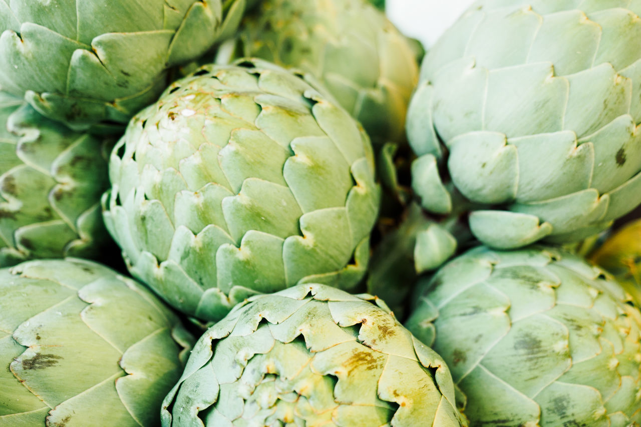 fresh from the market Artichoke Artichokes Close-up Day Food Food And Drink Freshness Full Frame Green Color Growth Healthy Eating Large Group Of Objects Market Nature No People Outdoors Vegetable