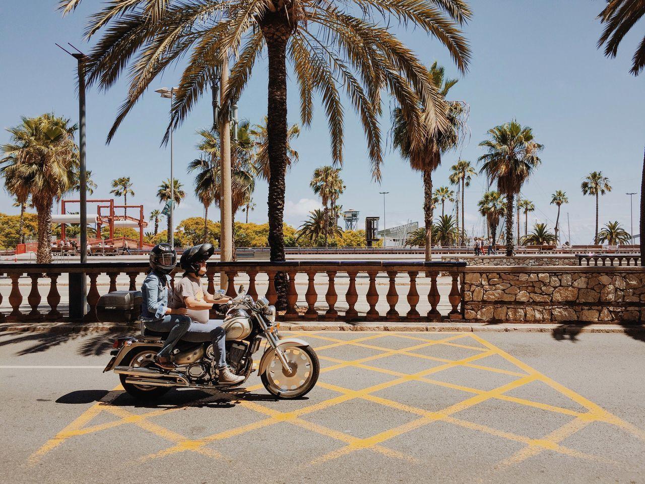 Joy ride. Enjoying Life Traveling Vscocam VSCO Wanderlust Biketour Motorcycles Cruising Palm Trees Sunshine Concrete Jungle