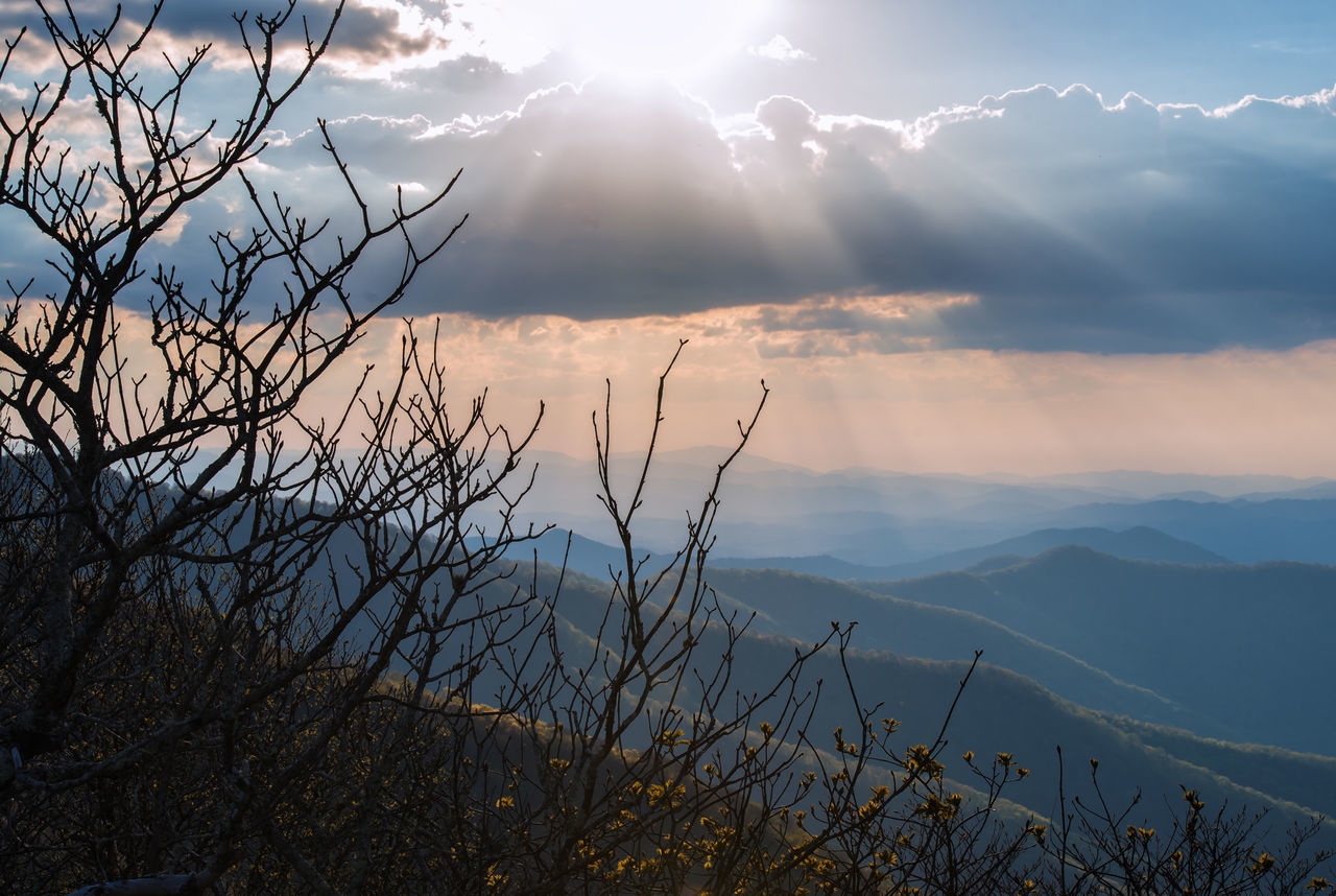 Beauty In Nature Blue Ridge Mountains Cloud - Sky Craggy Gardens Day Mountain Nature No People Outdoors Scenics Sky Sun Sunlight Sunset Tranquil Scene Tranquility Tree