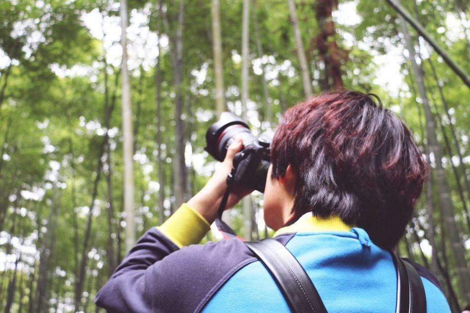 Beautiful stock photos of china, Beauty In Nature, Beibei, Camera - Photographic Equipment, China