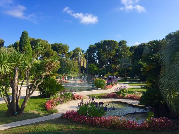Palm Tree Villa Cap Ferrat France Château Provence Travel Destinations House Gardens French Scenics Beauty In Nature Palm Tree
