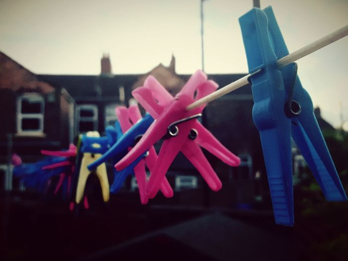 This Is Perspective day 27. Pegs Lots Washing Lots Of Love Things In A Row Outside In The Garden Not Raining