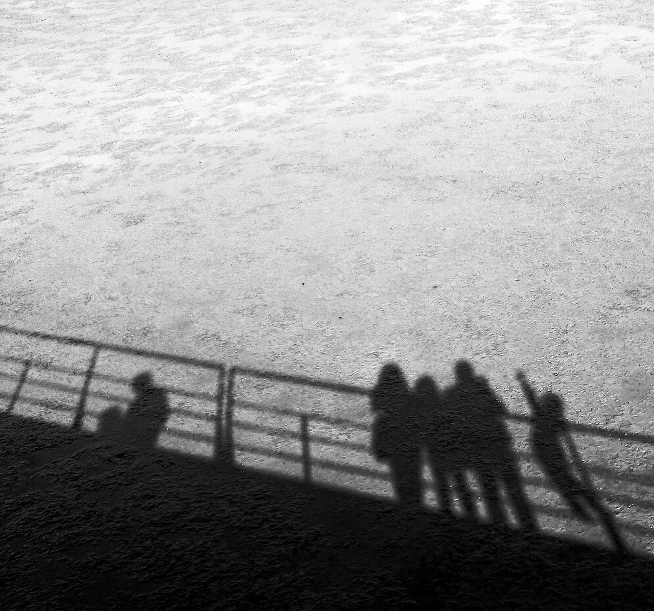 high angle view, shadow, outdoors, day, nature, real people, standing, togetherness