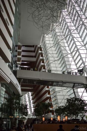 Singapore Architecture Light Travel